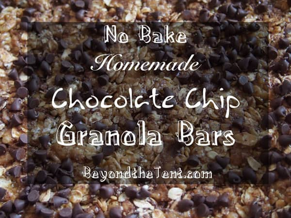 Camping No Bake Granola Bars Recipe 29