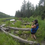 Camping In The Boundary Waters Canoe Area 28
