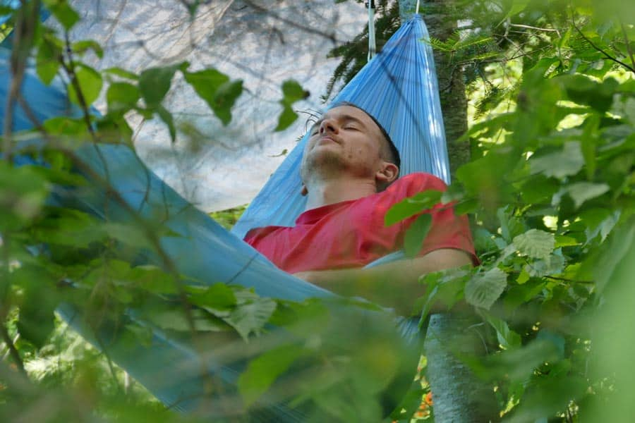 Napping In Hammock