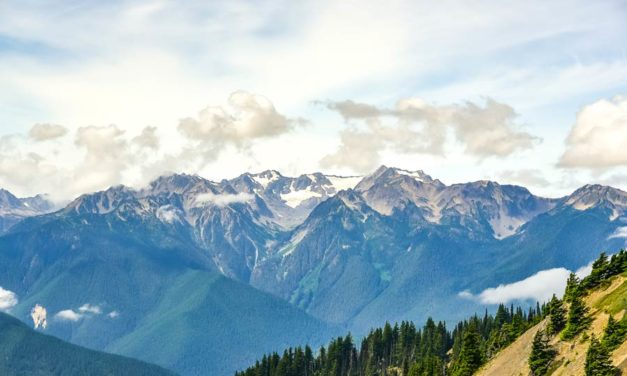 The Complete Visitor's Guide to Olympic National Park