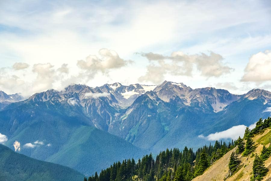 View of Olympic Mountains in Olympic National Park