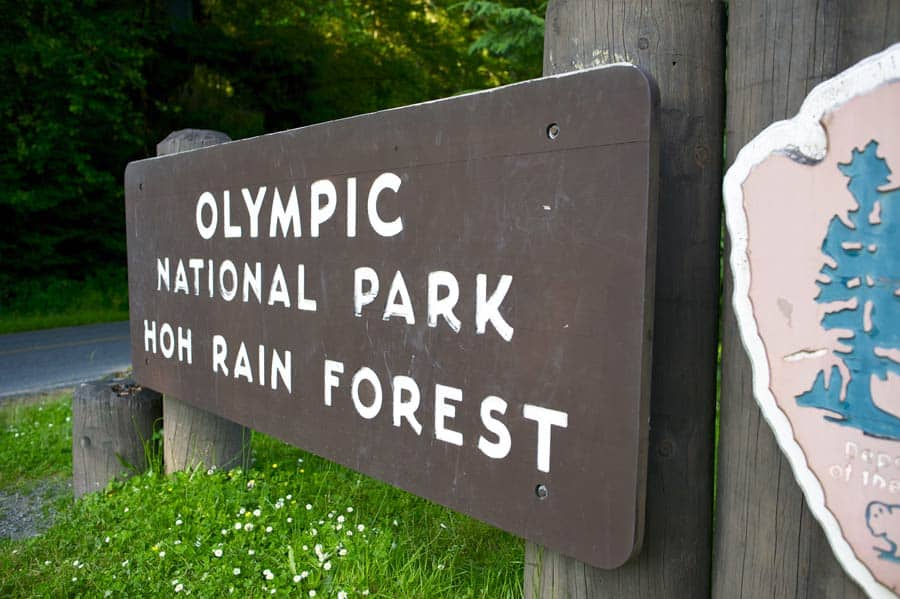 visit Olympic National Park