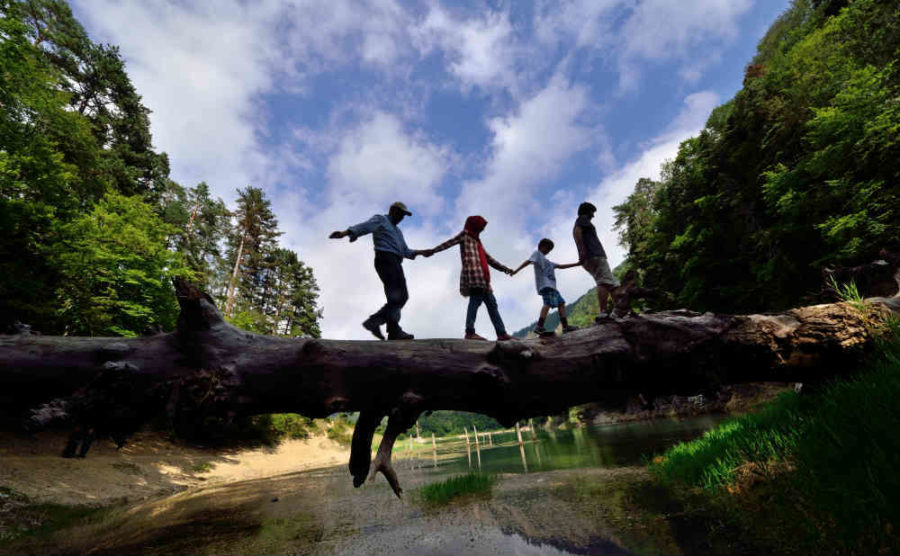 Family Walking On Fallen Tree In Balance Beyond The Tent
