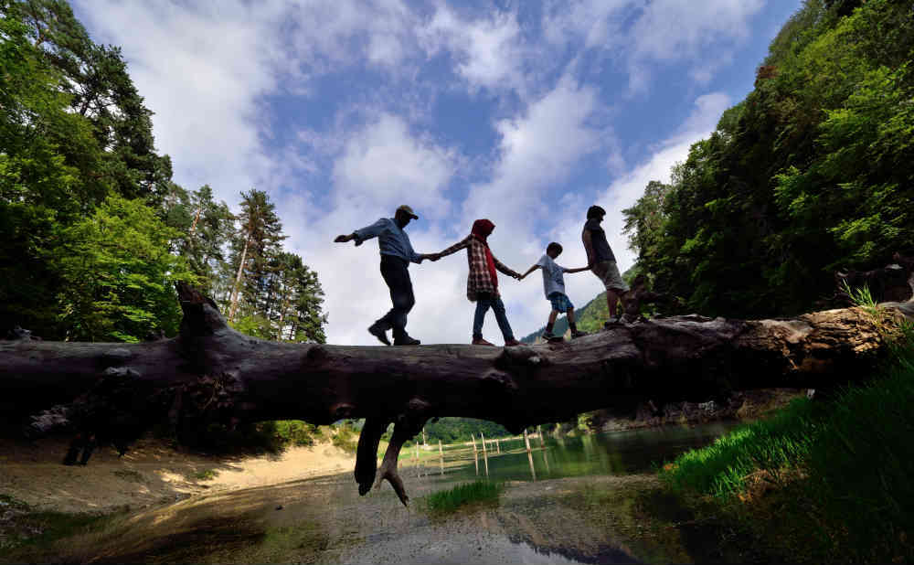 family walking on fallen tree in balance