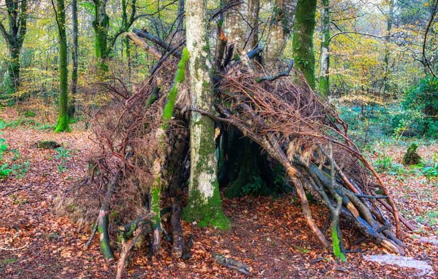 Camping survival shelter in the woods.