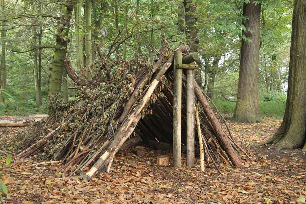 A stick shelter in the woods