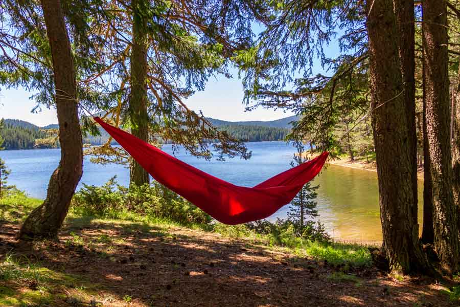 Hammock Hanging by Lake
