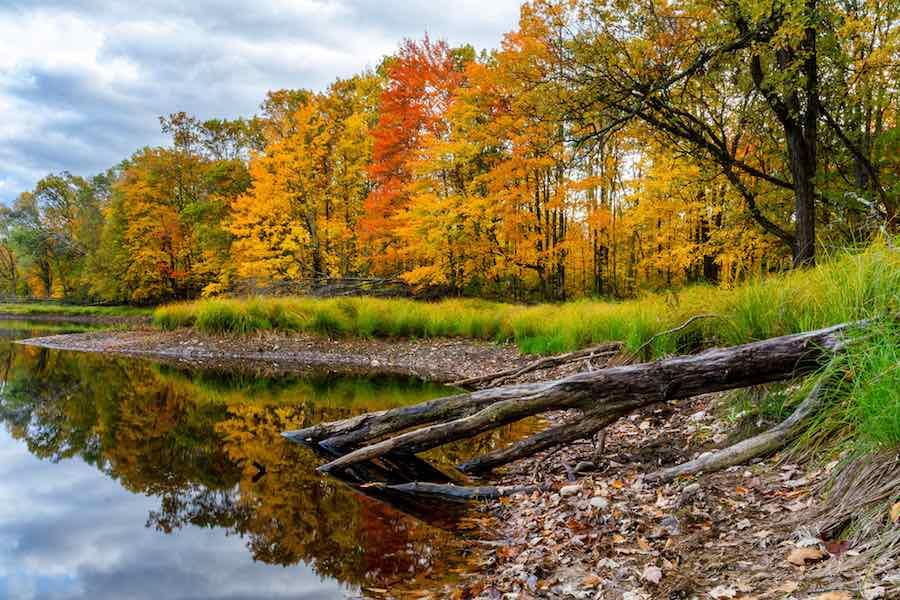 Fall Foliage on Wood Lake Wisconsin