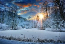 Winter Hammock Camping Scene