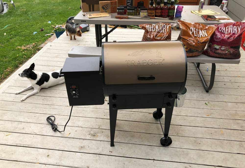 Traeger Pellet Grill and Smoker on Deck