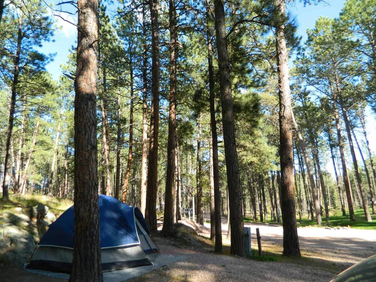 Camping in the Black Hills - SD