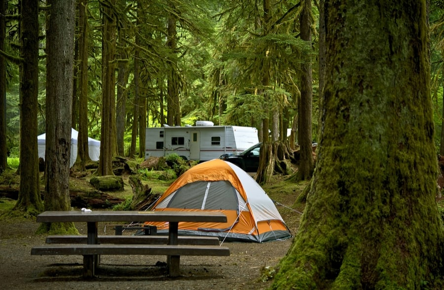The Best Camping in Olympic National Park 15