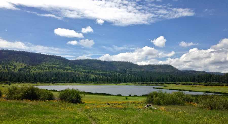 Lake in Apache Sitgreaves National Forest