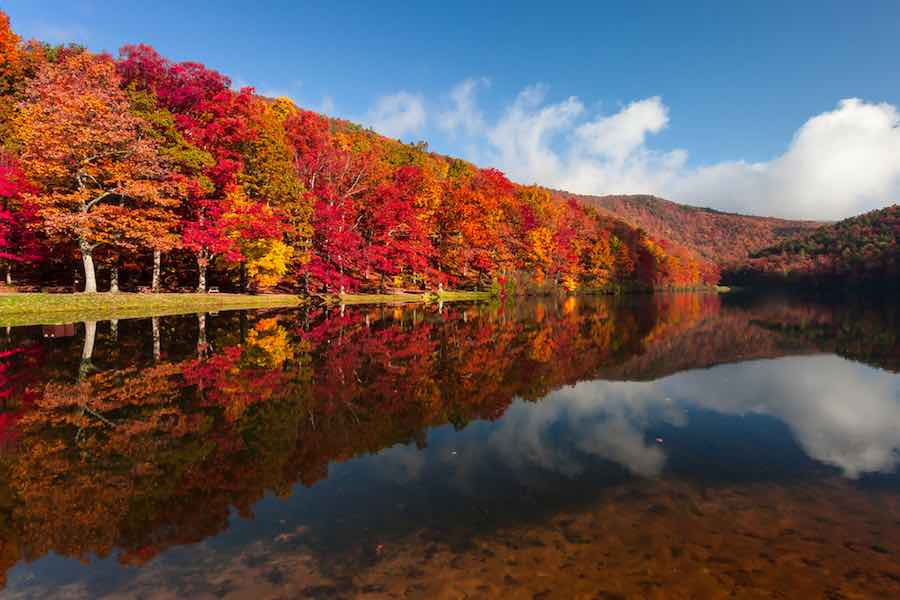 Red foliage in Sherando Lake Recreation Area in Fall. Virginia