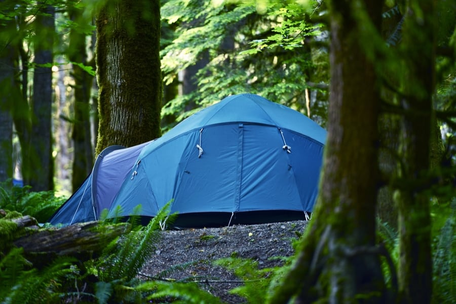 The Complete Guide to Camping in Mount Rainier National Park 13