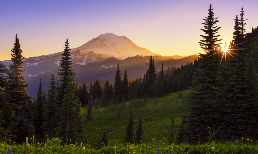The Complete Guide to Camping in Mount Rainier National Park 14