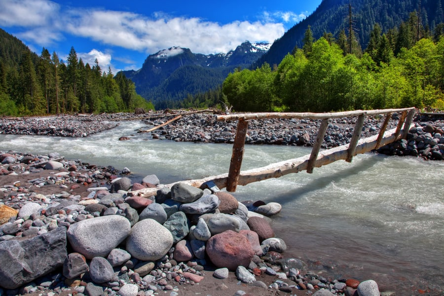 The Complete Guide to Camping in Mount Rainier National Park 28