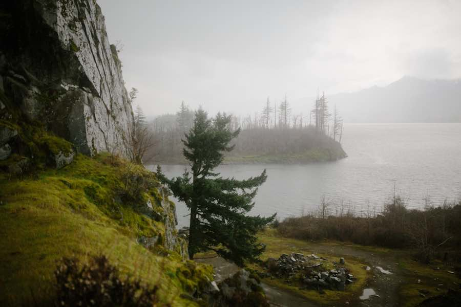 Foggy View of Windswept Trees and and Island in the Columbia River Gorge