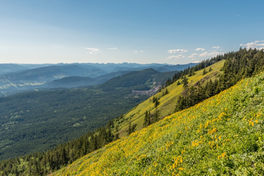 33+ of the Best Hikes in Washington 45