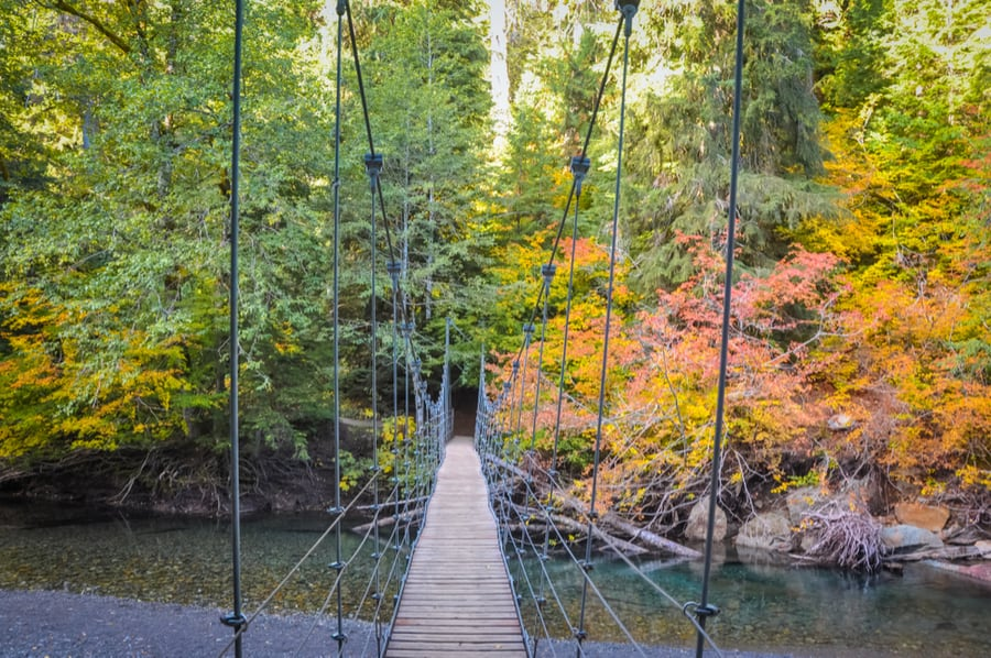 33+ of the Best Hikes in Washington 20