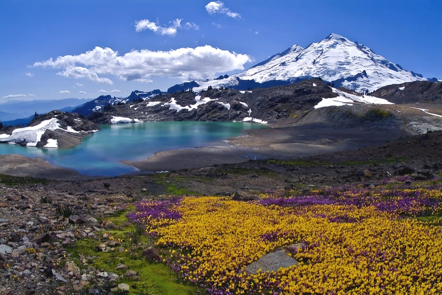 33+ of the Best Hikes in Washington 3