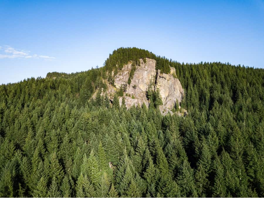 33+ of the Best Hikes in Washington 4