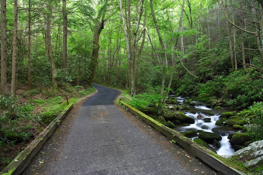 The Complete Guide to Camping in Great Smoky Mountains National Park 43