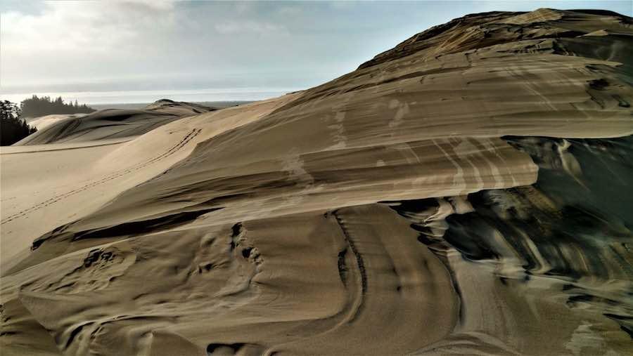 Sand Dunes Near Jessie M Honeyman State Park