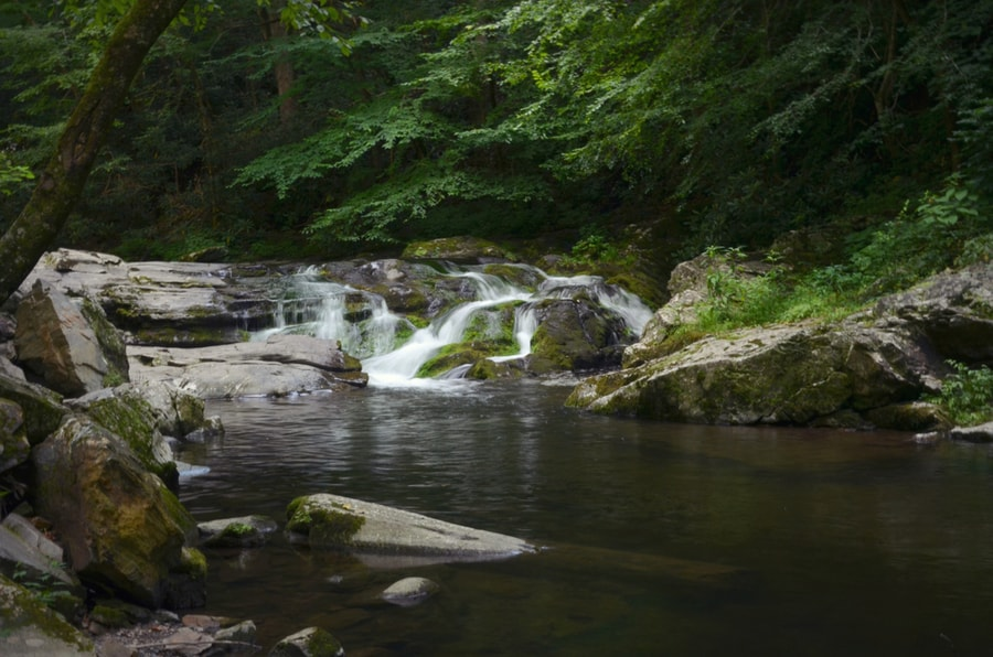 The Complete Guide to Camping in Great Smoky Mountains National Park 44