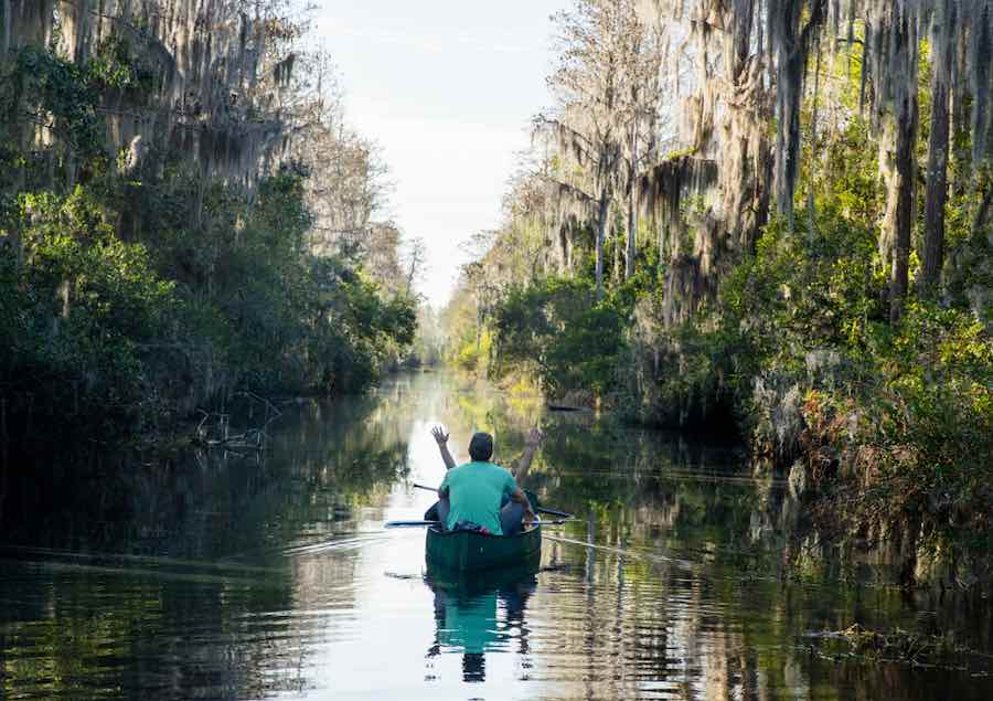 Canoeing along the Suwannee Canal of the Okefenokee National Wildlife Refuge