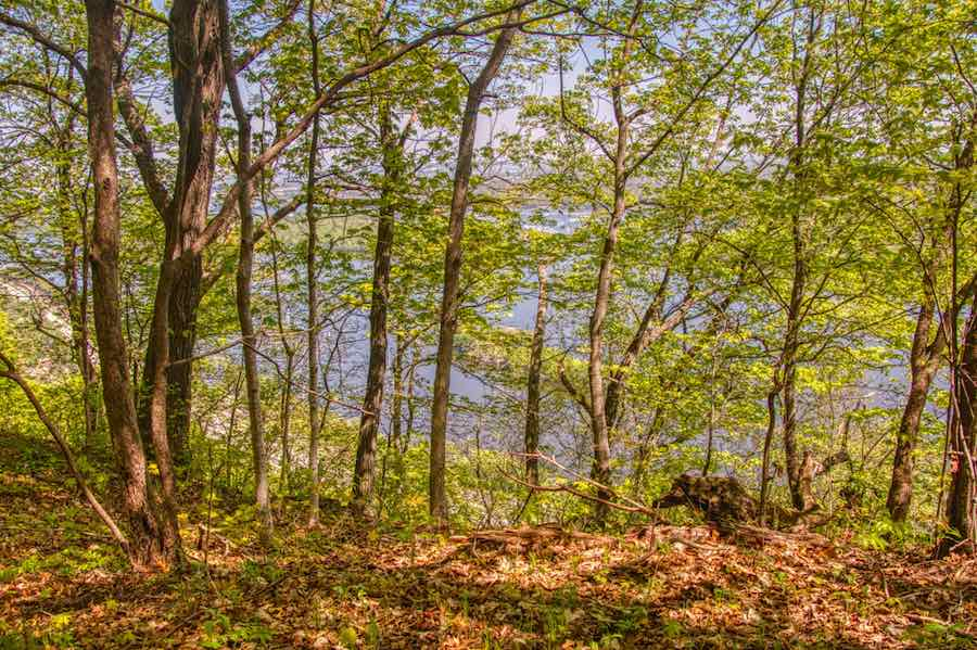 Hiking in Minnesota - Great River Bluffs State Park