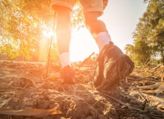Best Hiking Trails in Minnesota