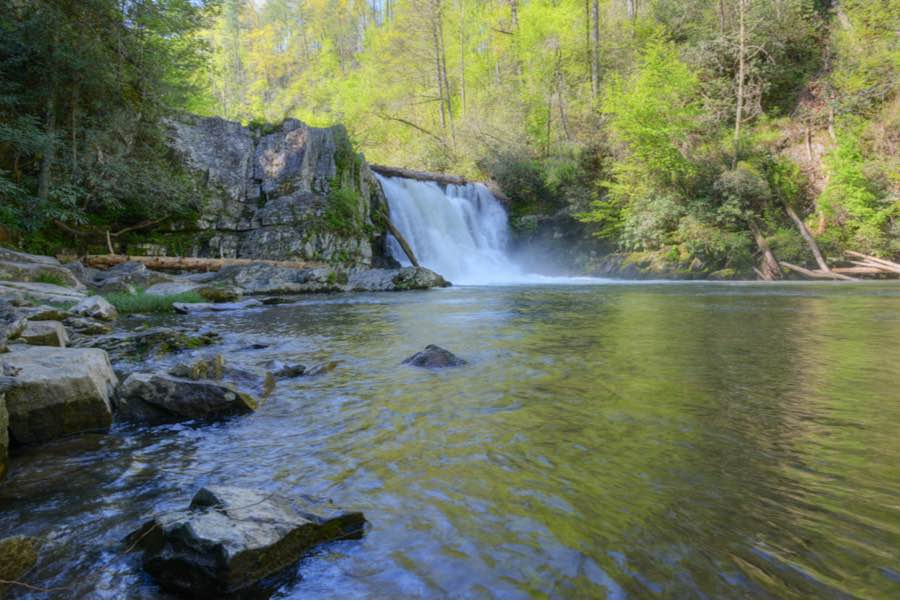 Abrams Creek Campground in Great Smoky Mountains National Park
