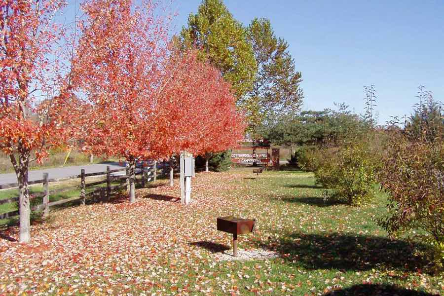 Fall colors at Cottonwoods RV Park