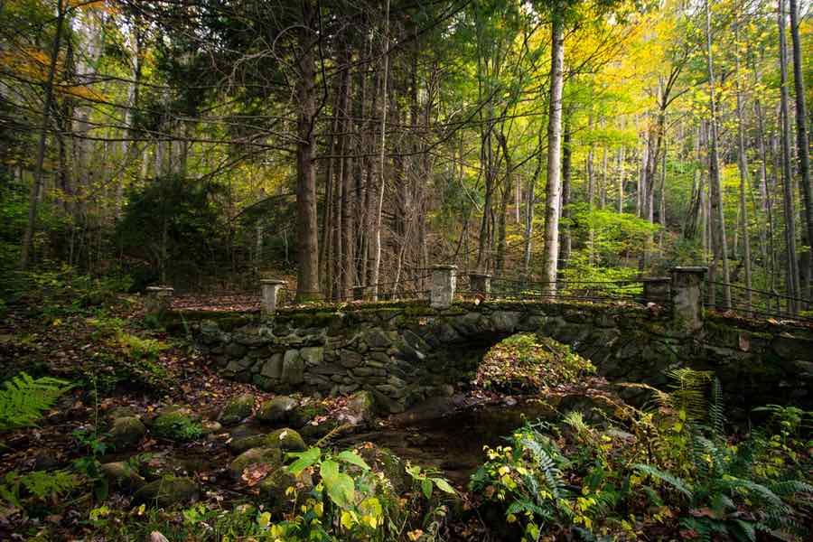 Elkmont in Great Smoky Mountains National Park