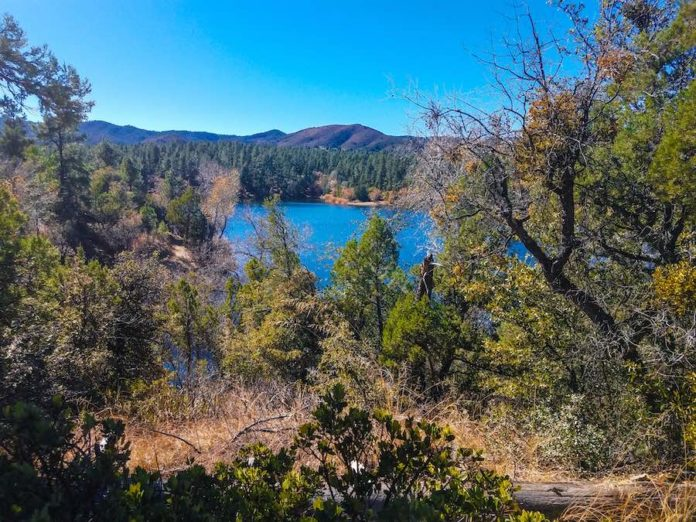 A view of Lynx Lake through the Trees in Prescott AZ