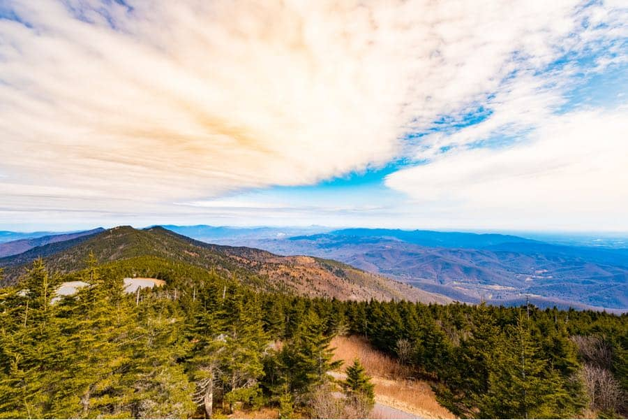 Mount Mitchell State Park in North Carolina
