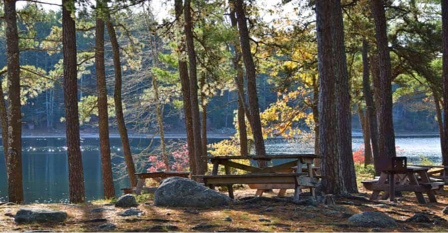 Myles Standish State Forest Campground in Massachusetts