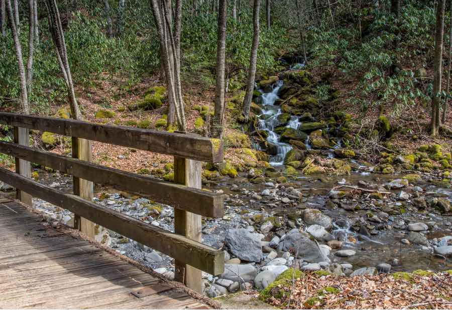 30 Best Places for Camping in North Carolina - Beyond The Tent