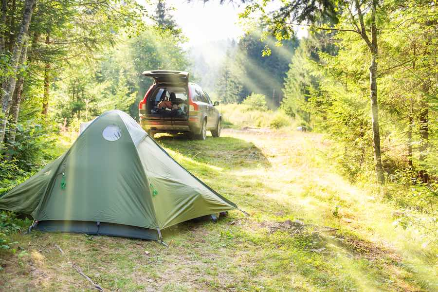 camping with the sun shinning in the woods.