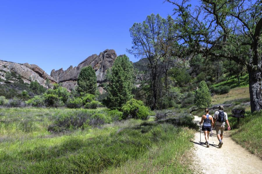 The Best Camping in Pinnacles National Park 3