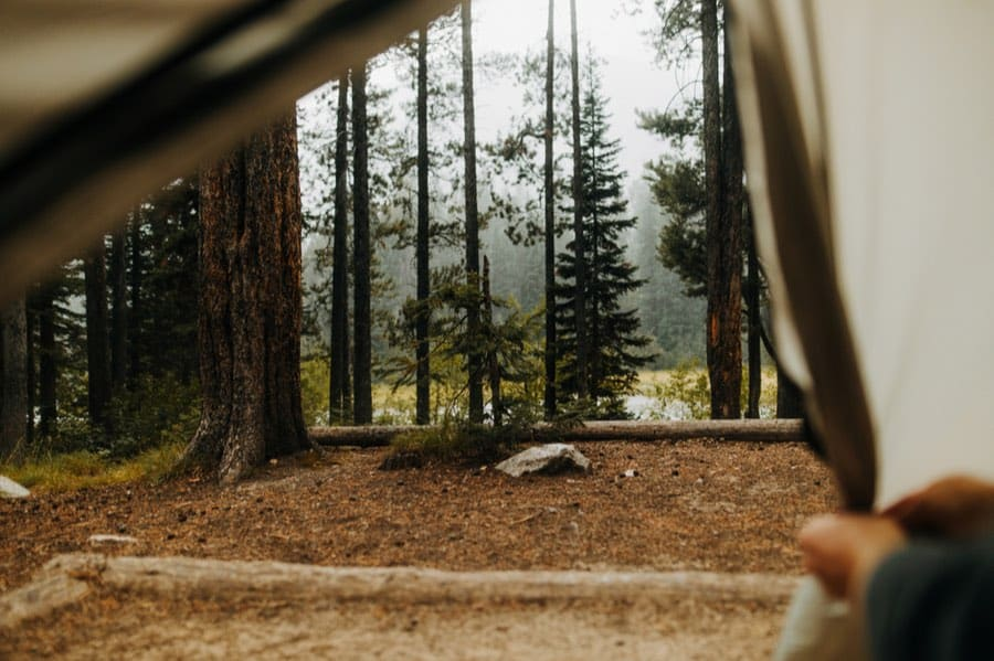 Lizard Creek Campground in Grand Teton National Park