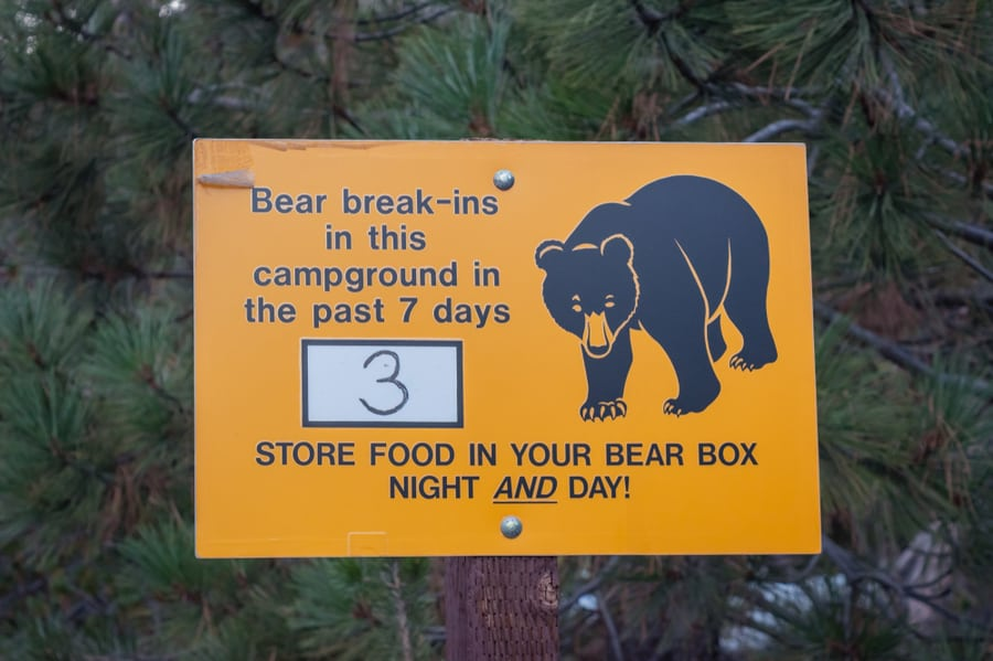 Sign Discussing Bear Break-Ins In a Campground