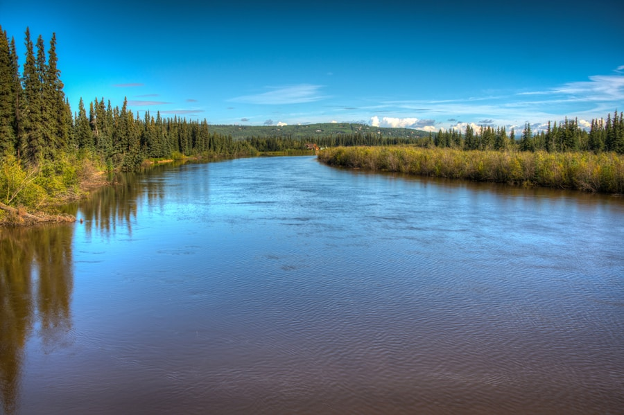 Chena River Near Fairbanks