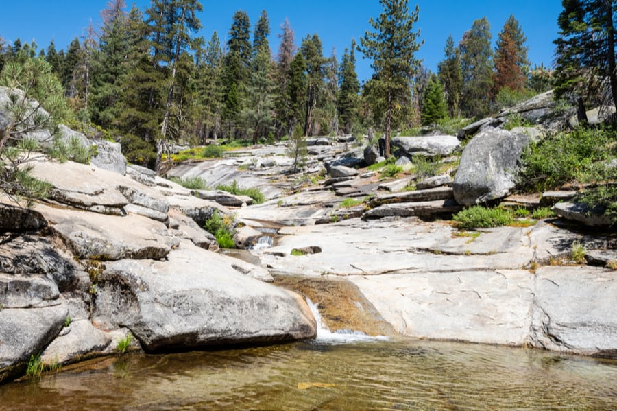 Dorst Creek Campground in Sequoia National Park