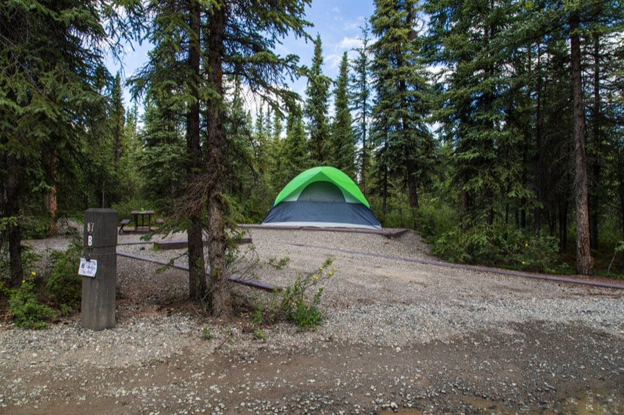 Riley Creek Campground in Denali National Park
