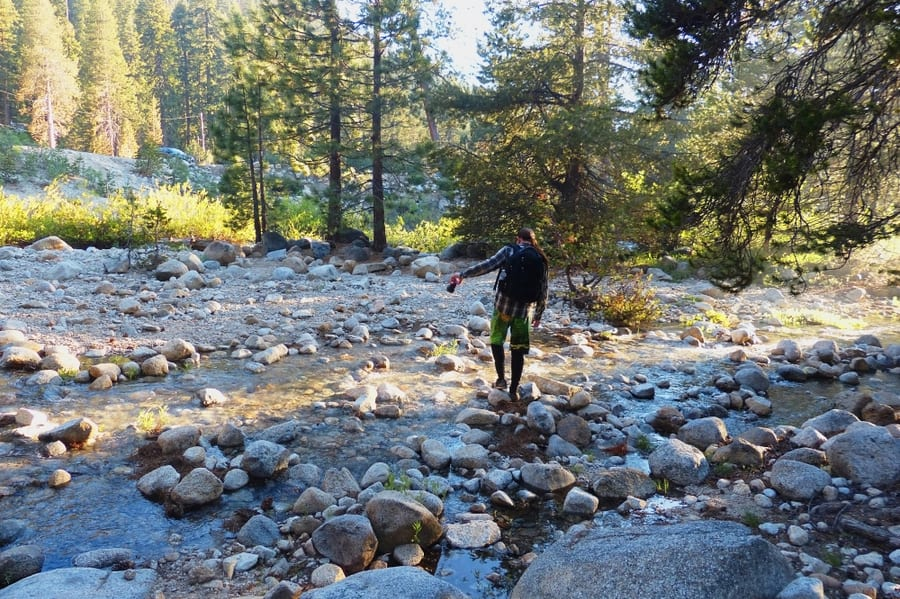 Stony Creek in Sequoia National Park