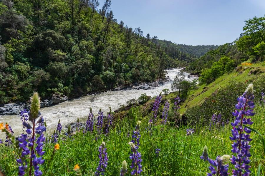 Yuba River in California