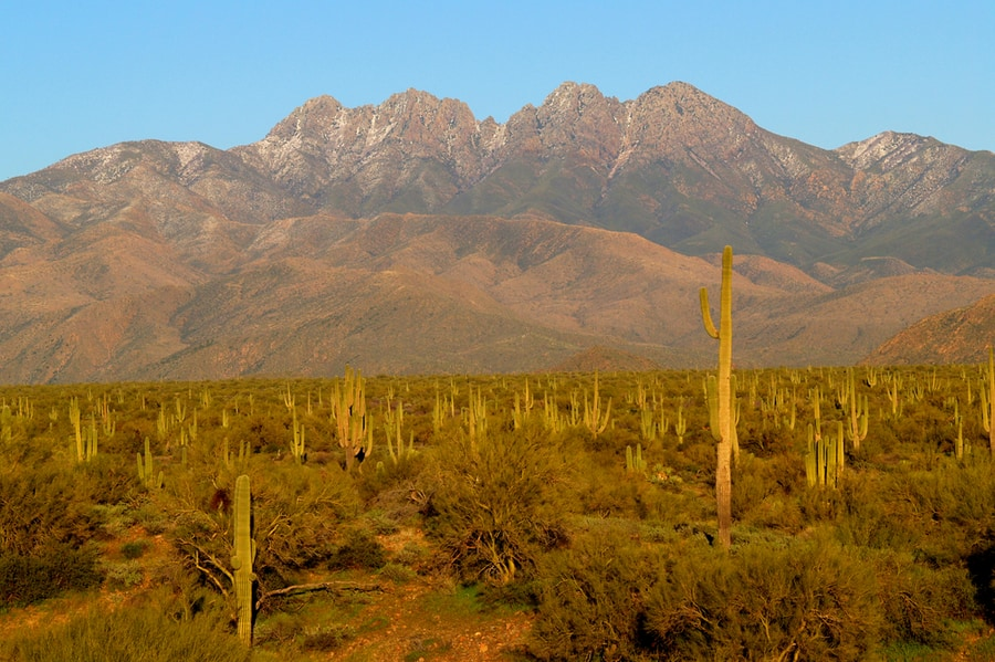 Four Peaks in Arizona