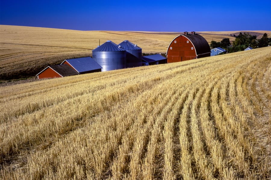 Farm Near Pendleton Oregon